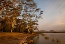 A Lake Shore Image Taken In Kenya.