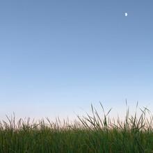 Dusk In The Prairie Wetlands At Voas Nature Area Near Minburn, Iowa