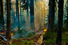 The Crofton Fire Burned For Three Days On The South-East Slope Of Mt. Adams, A Dormant Volcano In Washington State.