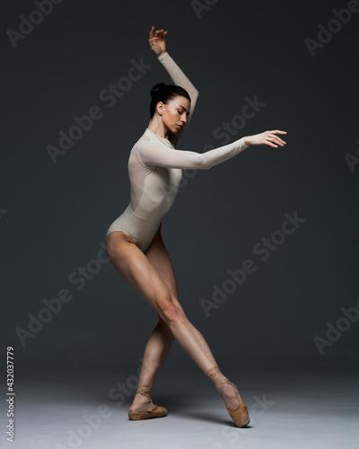 Fotografie, Tablou Young beautiful skinny ballerina is posing in studio