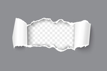Realistic Vector Gray Torn Open Paper With Rolled Sides And Space For Text On Transparent Horizontal Background. Torn Strip Of Paper With Torn Edges.
