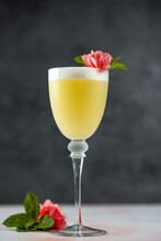 Lemon Summer Cocktail