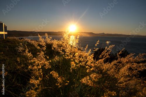 Obraz na plátně Byron Bay at sunset,  Byron Bay Australia