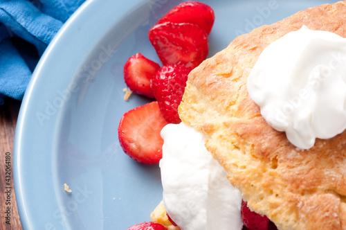 Vászonkép strawberry shortcake stock photo