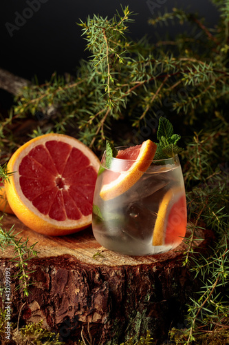 Obraz Gin and Tonic cocktail with grapefruit and mint. - fototapety do salonu