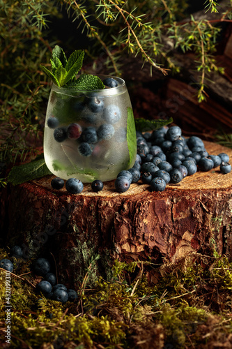 Obraz Gin and Tonic cocktail with blueberry and mint. - fototapety do salonu