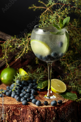 Obraz Gin and Tonic cocktail with blueberry, lime, and mint. - fototapety do salonu