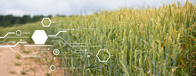 Concept Of Smart Agriculture And Modern Technology