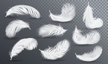 Falling White Fluffy Twirled Feather Set, Isolated Goose Feathers Realistic Style, Vector 3d Illustration.