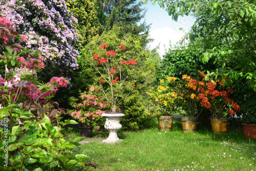 Garten 1162 - fototapety na wymiar
