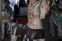 Carousel Horse In The Park