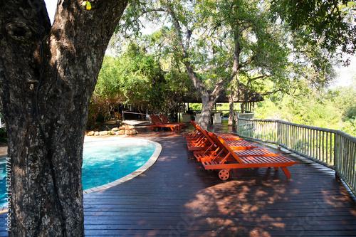 Sabi Sabi private game reserve pool and deck chairs at main lodge Fototapet