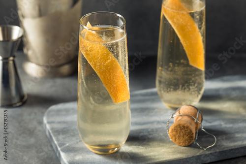 Obraz Boozy Elder Fashion Royale Grapefruit Champagne Cocktail - fototapety do salonu