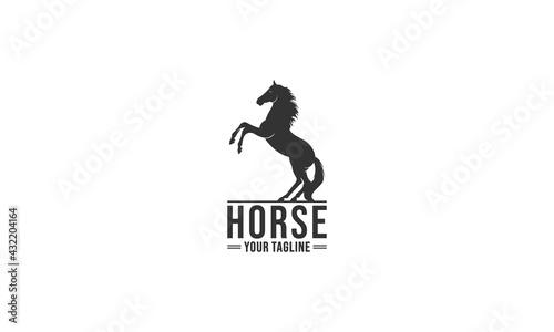Obraz na plátne horse logo in white background