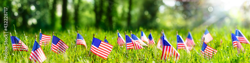 Fototapeta American Flags In Grass - Defocused Abstract Memorial Day background obraz