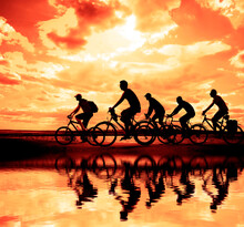 Sporty Company Friends On Bicycles Outdoors Against Sunset. Silhouette Five 5 Cyclist Going Along Coast. Sunlight. Sport Team. Group Of People.  Empty Copy Space For Inscription. Reflection On Water.