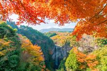 福貴野の滝風景