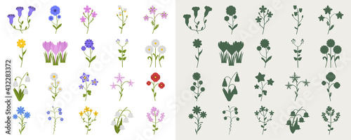Fotografie, Obraz A set of wildflowers in a flat style and silhouettes