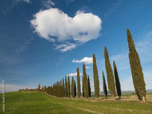 tuscany - fototapety na wymiar