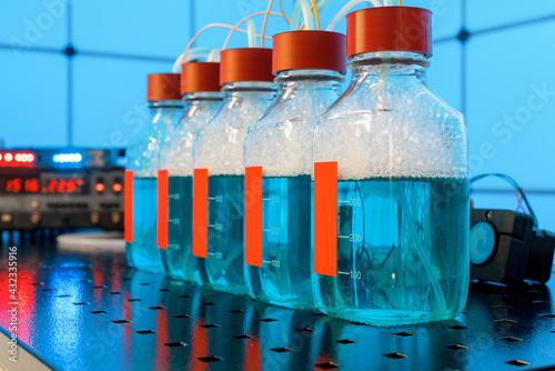 Obraz Biohydrogen droduction research produced by fermentation. - fototapety do salonu