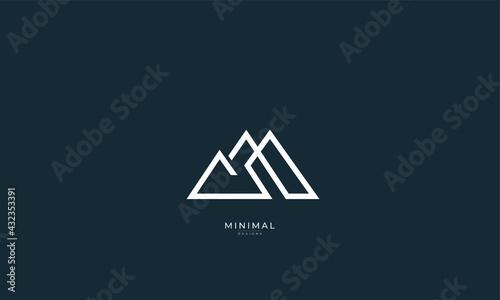 Stampa su Tela a line art icon logo of a mountain