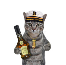 A Gray Cat Captain In A Sailor Hat With A Bottle Of Rum. White Background. Isolated.