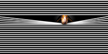 HOME ALONE- A Sad Faced Beagle Dog Looks Out A Window With His Face Pushed Through  Venetian Blind Slats. This Is A 3-D Illustration About Lonely Pets.
