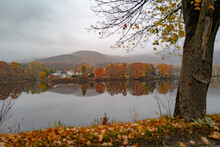Peak Foliage Along The Connecticut River Between Vermont And New Hampshire State Border