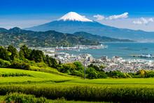 Japanese Green Tea Plantations From Nihondaira And Mt. Fuji Over Sea.