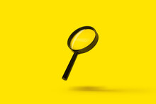 Magnifying Glass Loupe Magnifier Search Flies Soars Over Yellow Background