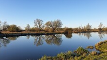 Cambridgeshire Fens Great Ouse Reflection