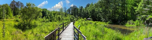 Stampa su Tela a stunning panoramic shot of long winding brown wooden bridge over silky brown w