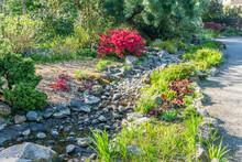 Dry Creek Bed Landscape 3