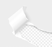 Torn Paper Corner With Space For Text. Realistic Vector Torn Edges Paper Sheet