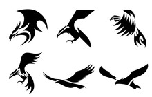 Set Of Six Line Art Vector Logo Of Eagle. Can Be Used As A Logo Or Decorative Items..