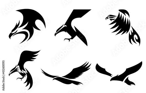 Valokuva Set of six line art vector logo of eagle