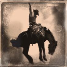 Vintage Bucking Bronco Wet Plate Photograph Art