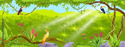Fotografia Jungle forest vector background, nature tropical wood landscape, liana, paradise trees, exotic birds, stone