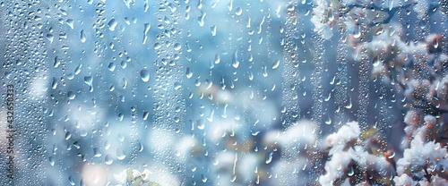 Fototapeta spring rain in blooming garden, concept freshness nature weather seasonal background obraz