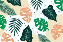 Hand Drawn Tropical Leave S Background