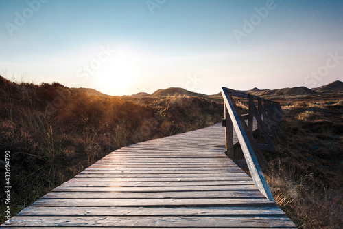 Low angle view of wooden boardwalk with railing leading through landscape. - fototapety na wymiar