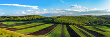 Countryside Spring Panorama Sunny Day Green Grass Agriculture Field And Forest