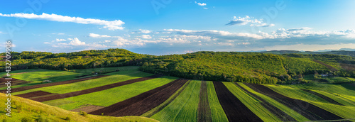 Foto Countryside spring panorama sunny day green grass agriculture field and forest