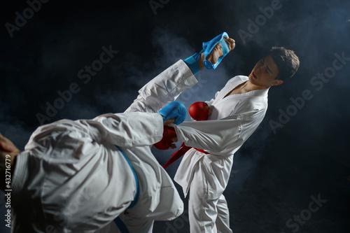 Tela Two male karatekas in white kimono and gloves