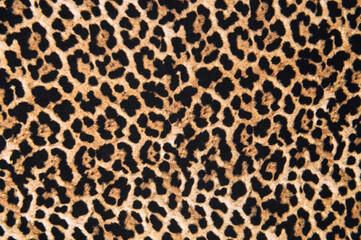 Animal print textile texture. Leopard fur background