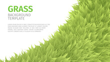 Grass Abstract Eco Background, Green Fluffy, Furry Texture For Brochures, Web Design, Vector Illustration