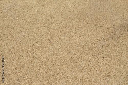 Valokuvatapetti Purer Sand am Meer mit Sandkörnern in Gelb