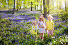 Kids Playing In Bluebell Woods