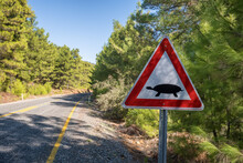 Road Sign Warning About Land Turtles Crossing The Road In Turkey