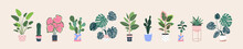 Home Plants In Flowerpot. Houseplants Isolated. Trendy Hugge Style, Urban Jungle Decor. Hand Drawn. Set Collection. Green, Blue, White, Pink, Brown, Beige Pastel Colors. Print, Poster. Logo, Label.